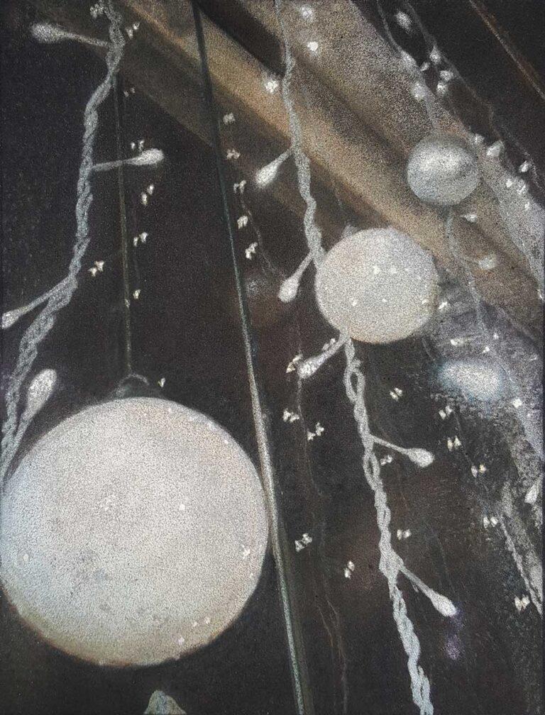 Sans titre 3 - 2009 - pastel sec sur papier velours - 21 x 28 cm